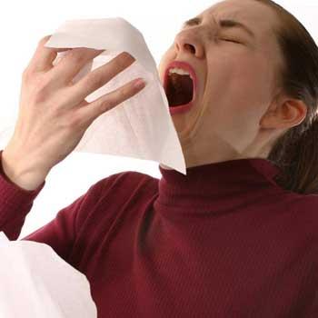 sneeze-speed